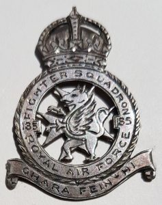 185 Fighter Squadron locally made badge
